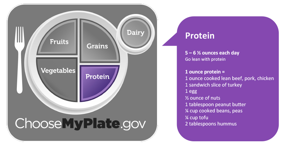 Protein. Eat 5 to 6.5 ounces of protein each day. Go lean with protein.